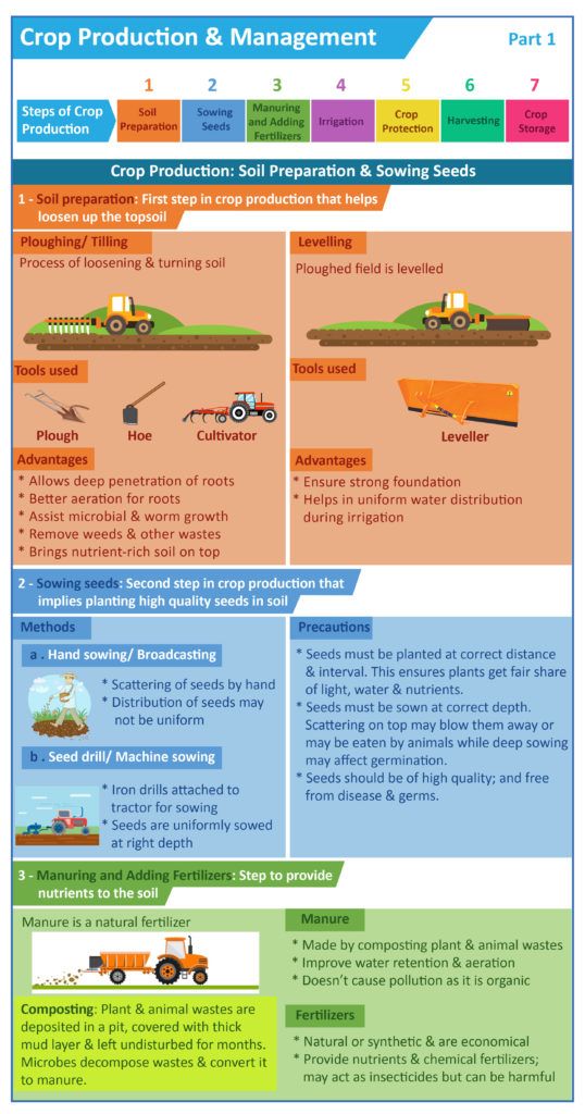 Soil Preparation and Sowing of Seeds