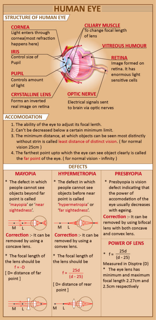 Human Eye and its Defects