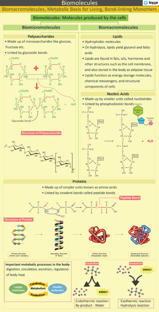 Bond linking Monomers