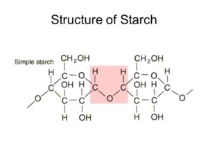 Structure of Starch