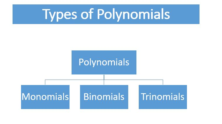 Types of Polynomials: Monomial, Binomial, Trinomial (CBSE)