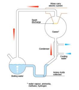 Miller-Uray-experiment