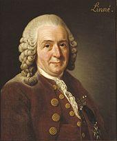 Carl Linnaeus Nomenclature