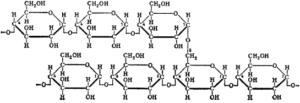 Glycogen polysachharide