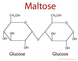 Maltose disaccharides