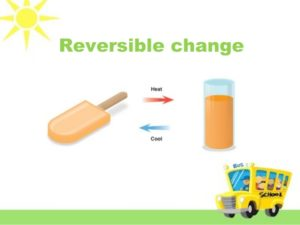 reversible changes and irreversible changes differences