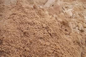 types of soil - sandy soil