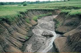 3 major causes of soil erosion