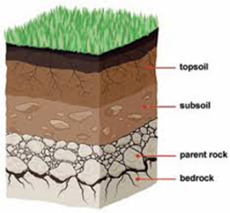 Soil and Soil Profile: Introduction, Formation, Horizon of