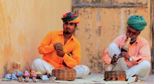 Story of a Snake Charmer: More about Snakes with Questions & Videos