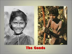 The Gonds: A Closer Look at History, Society, Religious Beliefs