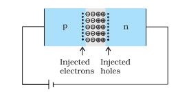 forward bias diode