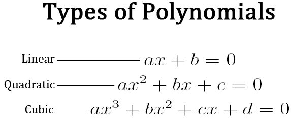 Image result for polynomial formula