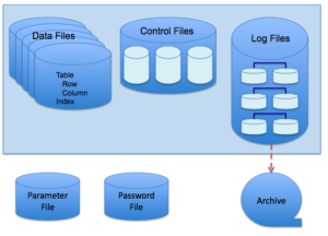 Function of DBMS