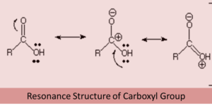 carboxylic acid structure