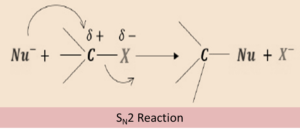 SN2 chemical reactions (nucleophilic substitution)