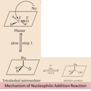 Nucleophilic Addition Reaction: Types, Mechanism, Examples
