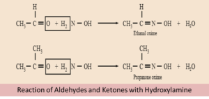 Nucleophilic Addition Reaction: Types, Mechanism, Examples and Videos