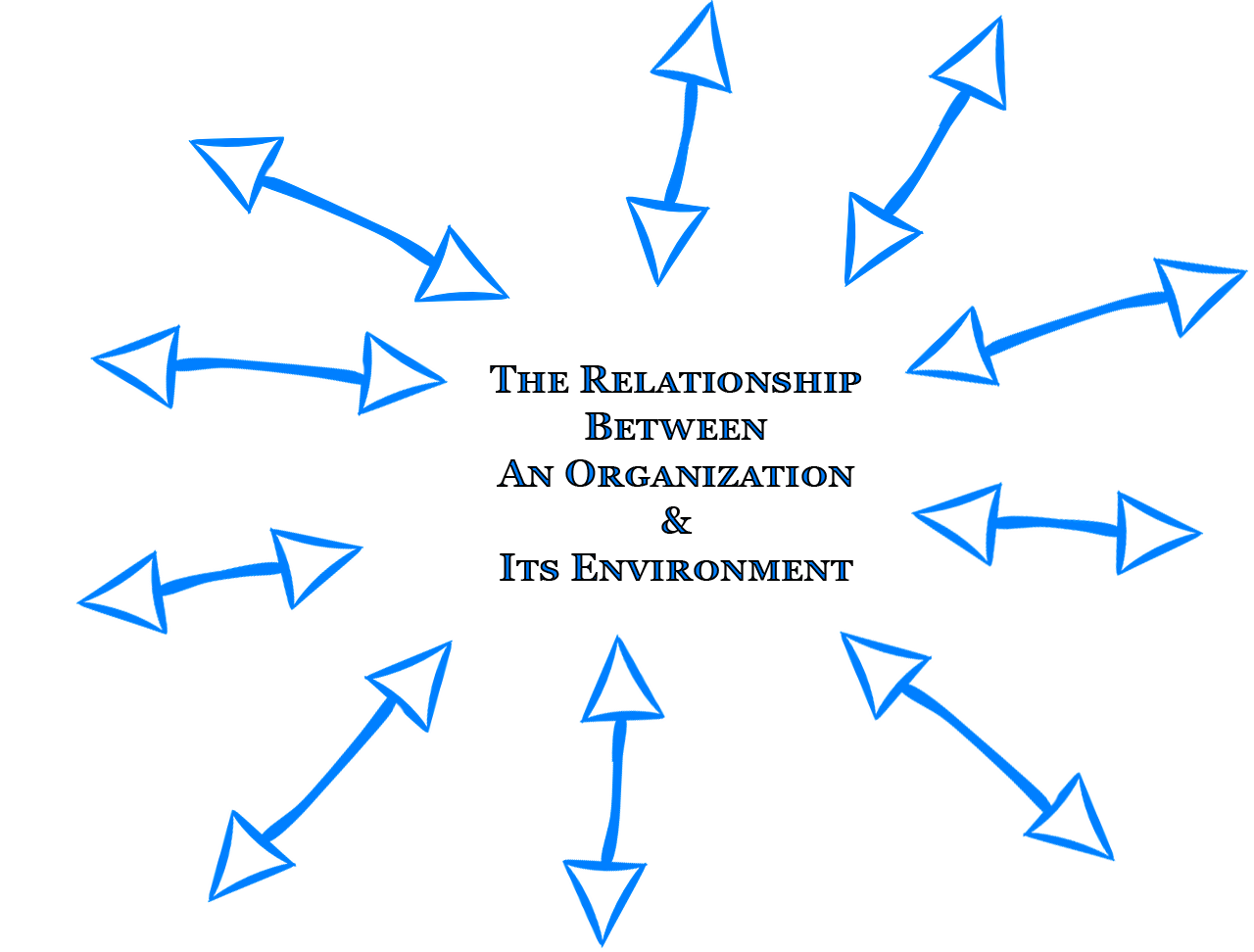 organization and its environment