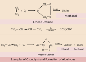 Formation of Aldehydes and Ketones by Ozonolysis