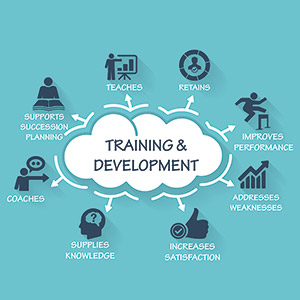training and development in hrm