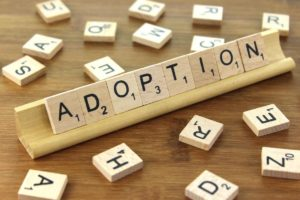 Hindu Adoption and Maintenance Act, 1956
