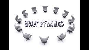 important principles of group dynamics