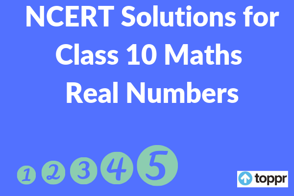 ncert solutions for class 10 maths chapter 15