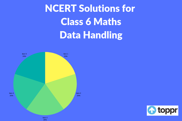 ncert solutions for class 6 maths chapter 9