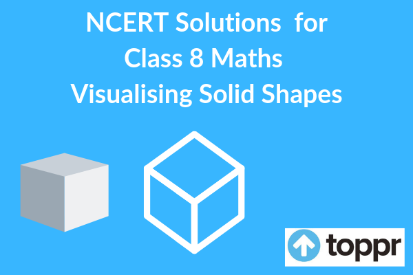 ncert solutions for class 8 maths chapter 10