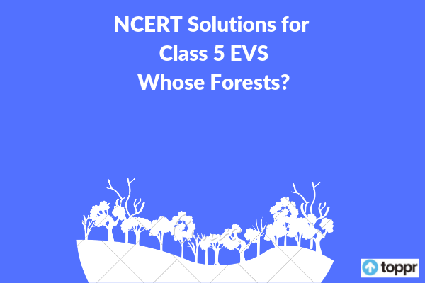 NCERT Solutions for Class 5 EVS Chapter 20 Free PDF Download