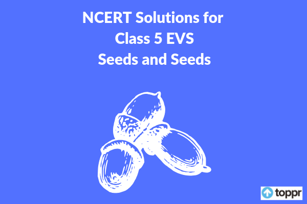 NCERT Solutions for Class 5 EVS Chapter 19 Free PDF Download