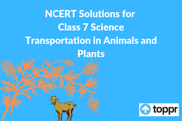 ncert solutions for class 7 science chapter 11