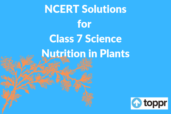 ncert solutions for class 7 science chapter 1