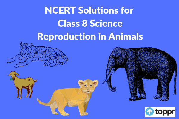 ncert solutions for class 8 science chapter 9