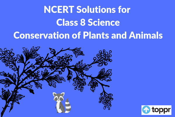 NCERT Solutions for Class 8 Science Chapter 7 Free PDF Download