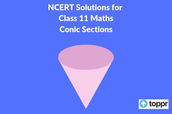 ncert solutions for class 11 maths chapter 11