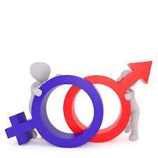 gender equality essay