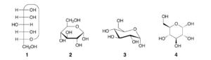 glucose formula