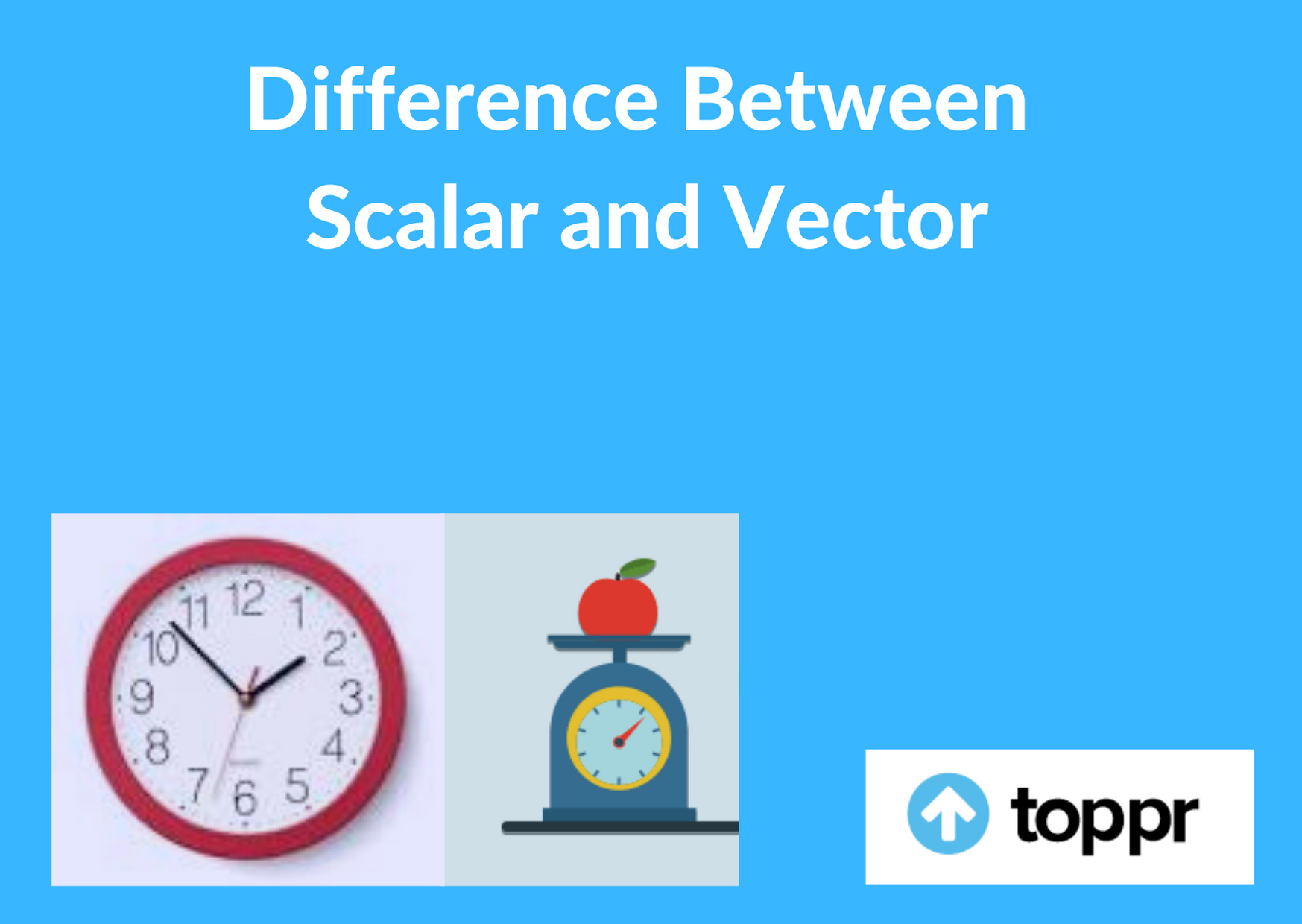 Difference between scalar and vector